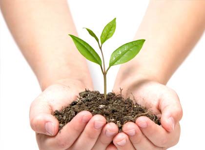 engagement environnementaux mironlab