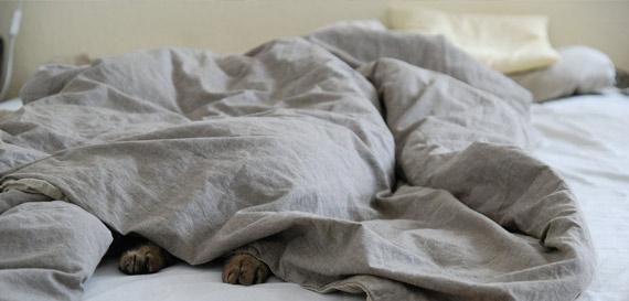 profond-sommeil